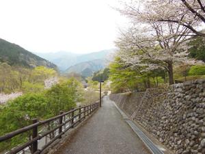 Mitosan_201304201_376