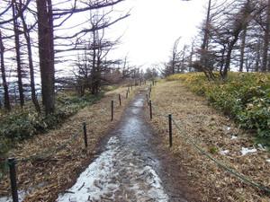 Utsukushigahara_20130427_252