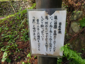 Odakesan_mitake_201305021_087