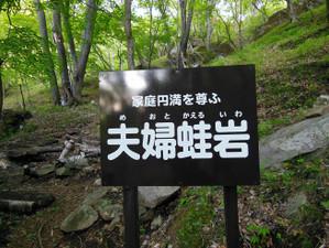 Sukaisan_201306011_077