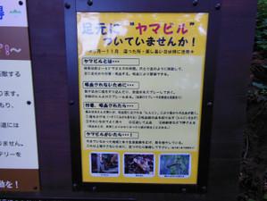 Ohkura_hiru_piston_20130608_164_2
