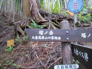 Ohkura_hiru_piston_20130608_179