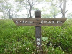 Ohkura_hiru_piston_20130608_328