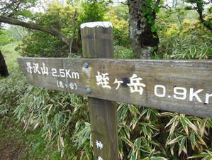 Ohkura_hiru_piston_20130608_380