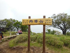 Ohkura_hiru_piston_20130608_462
