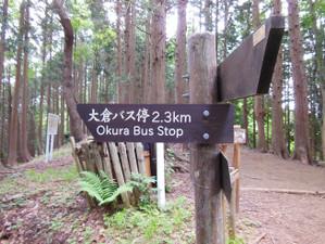 Ohkura_hiru_piston_20130608_529