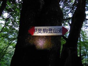 Kaikomagatake_20130706_047