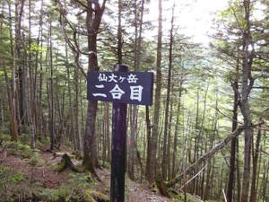Senjyogatake_20130720_079