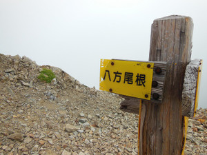 Karamatsudake_20130826_342