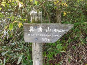 Hanamagariyama_20130831_028