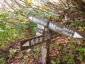 Adatarayama_20131014_340