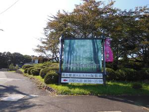 Adatarayama_20131014_362
