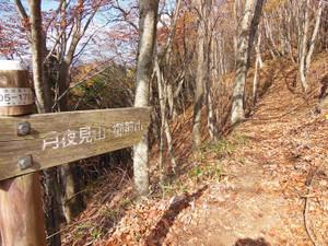 Okutamasanzan_201311161_268