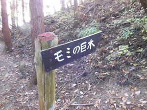 Hannyasan_kamanosawa_201312071_329