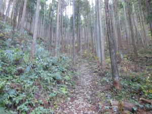 Tokurasanzan_20131214_043