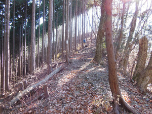 Tokurasanzan_20131214_184