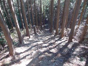Tokurasanzan_20131214_224