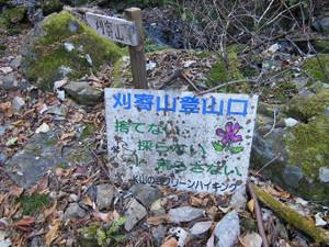 Tokurasanzan_20131214_284