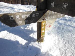 Kumotoriyamakamosawa_201312311_334