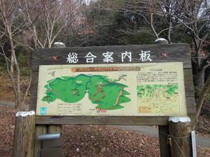 Daishoyamadaibouyama_20140125_001
