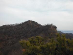 Daishoyamadaibouyama_20140125_056