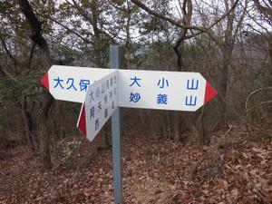 Daishoyamadaibouyama_20140125_059