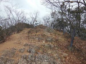 Daishoyamadaibouyama_20140125_074
