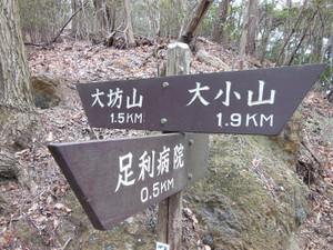 Daishoyamadaibouyama_20140125_136