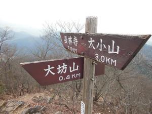Daishoyamadaibouyama_20140125_162