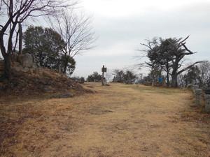 Daishoyamadaibouyama_20140125_166