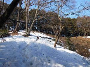 Hiwadasukariyugate_20140222_097