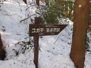 Hiwadasukariyugate_20140222_168