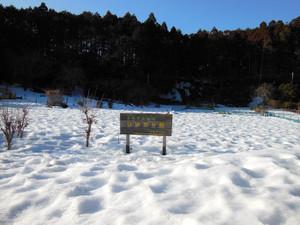 Hiwadasukariyugate_20140222_191