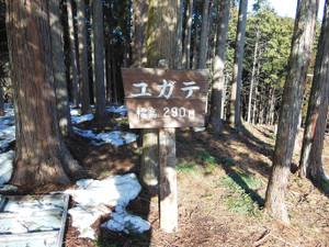 Hiwadasukariyugate_20140222_193