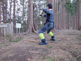 Bakaone_hirugatake_piston_201403_15