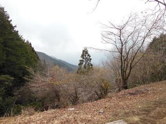Okumusashibateikei_20140419_121