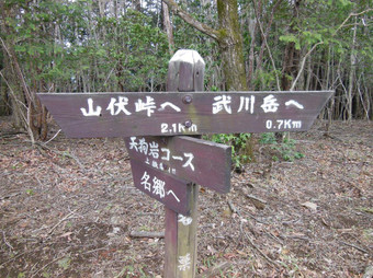 Okumusashibateikei_20140419_137