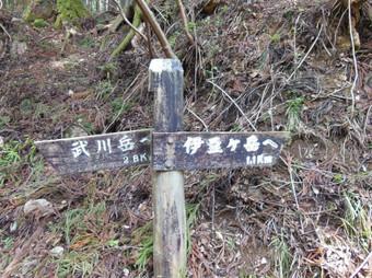 Okumusashibateikei_20140419_156