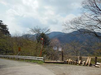 Okumusashibateikei_20140419_216