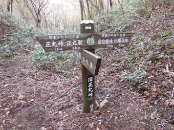 Okumusashibateikei_20140419_242