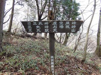 Okumusashibateikei_20140419_259