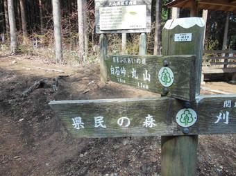 Okumusashibateikei_20140419_289