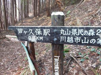 Okumusashibateikei_20140419_334